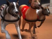 Greyhound Racing: Собачьи бега