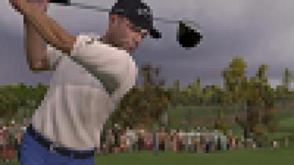 Tiger Woods PGA Tour 11 будет поддерживать PS Move