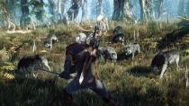PC-�������� The Witcher 3: Wild Hunt � ����������� GDC 2015