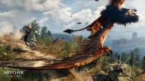 ������� �������� ������� � �������� ���� The Witcher 3: Wild Hunt
