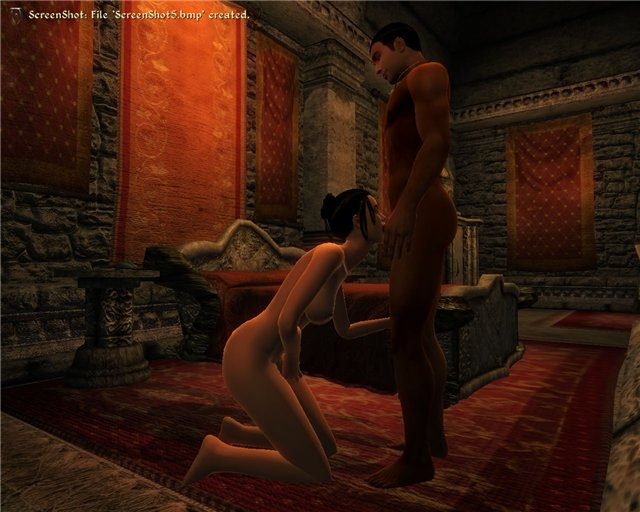 eroticheskiy-mod-k-igre-oblivion