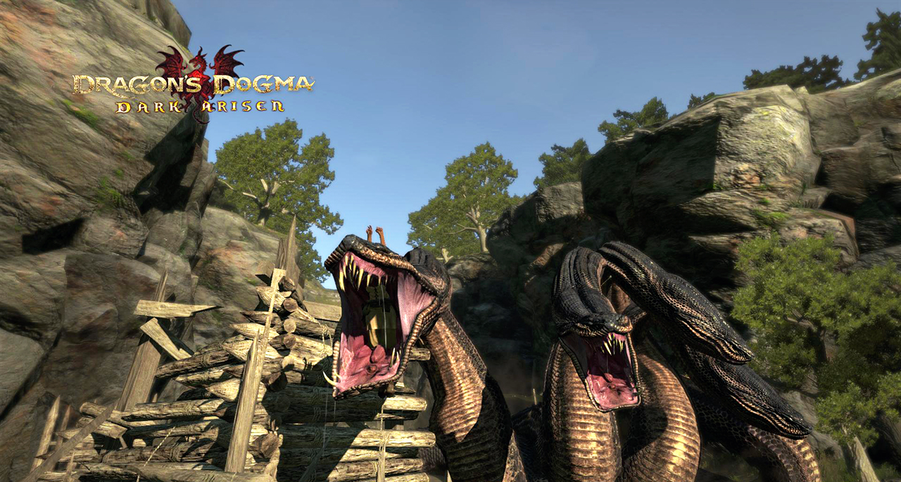 Dragon s dogma dark arisen подарки 74