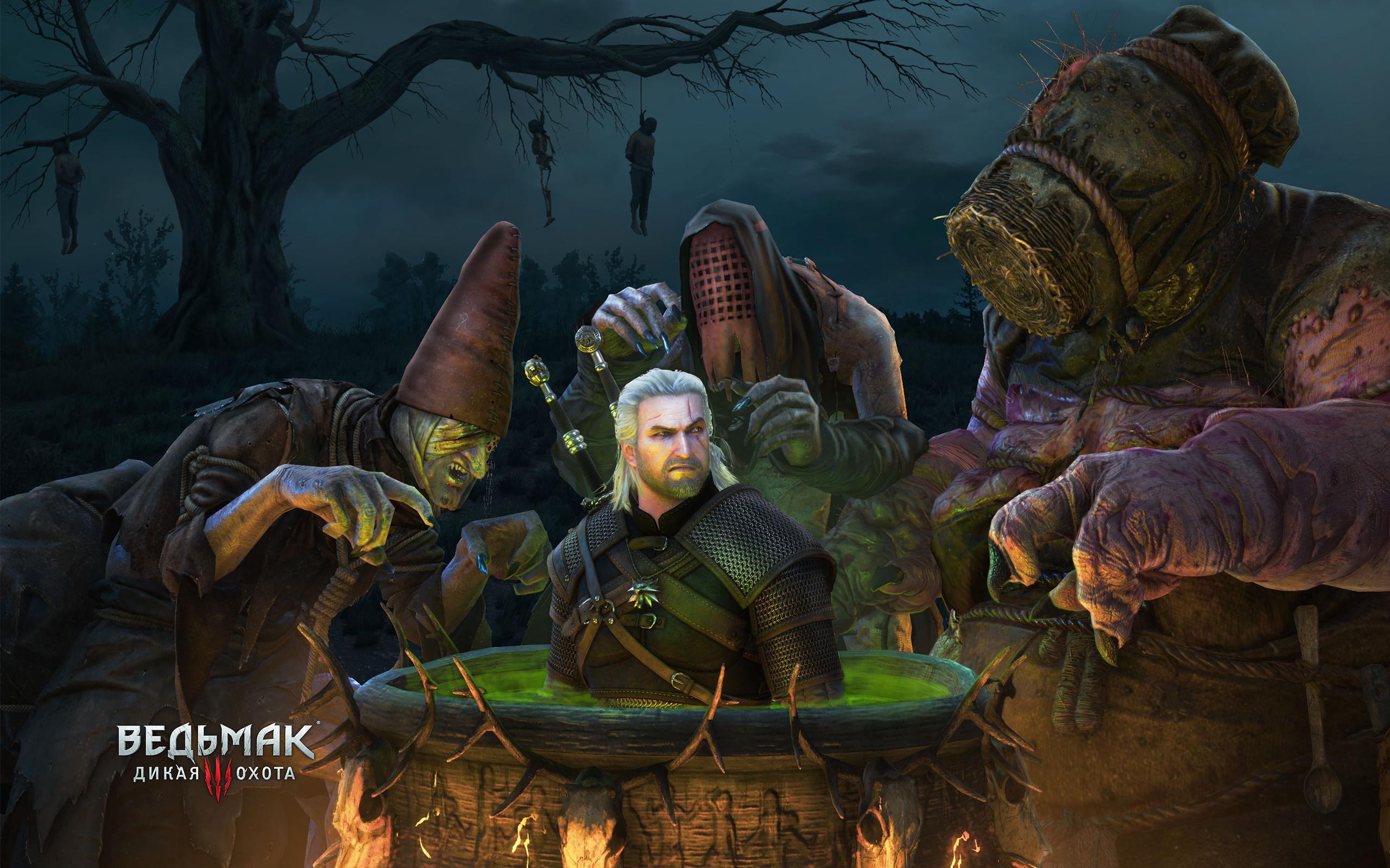 приведет серьезным ведьмак 3 как запустить новую игру видео ценную