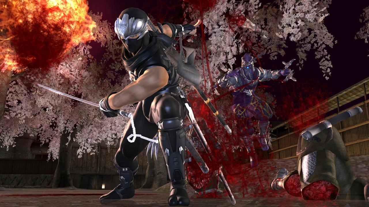 Ninja gaiden 2 pictures