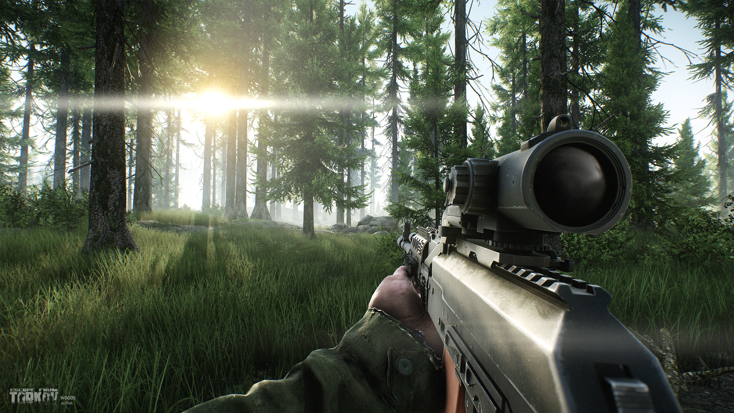 Лес - Escape from Tarkov woods, Скриншот
