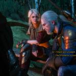 Witcher 3: Wild Hunt witcher 3 моменты