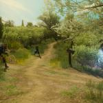 Witcher 3: Wild Hunt Компаньоны