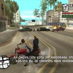 Grand Theft Auto: San Andreas Эти коты организованны