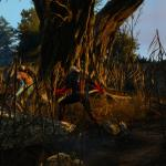 Witcher 0: Wild Hunt