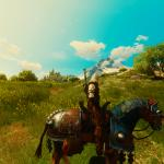 Witcher 3: Wild Hunt Туссент
