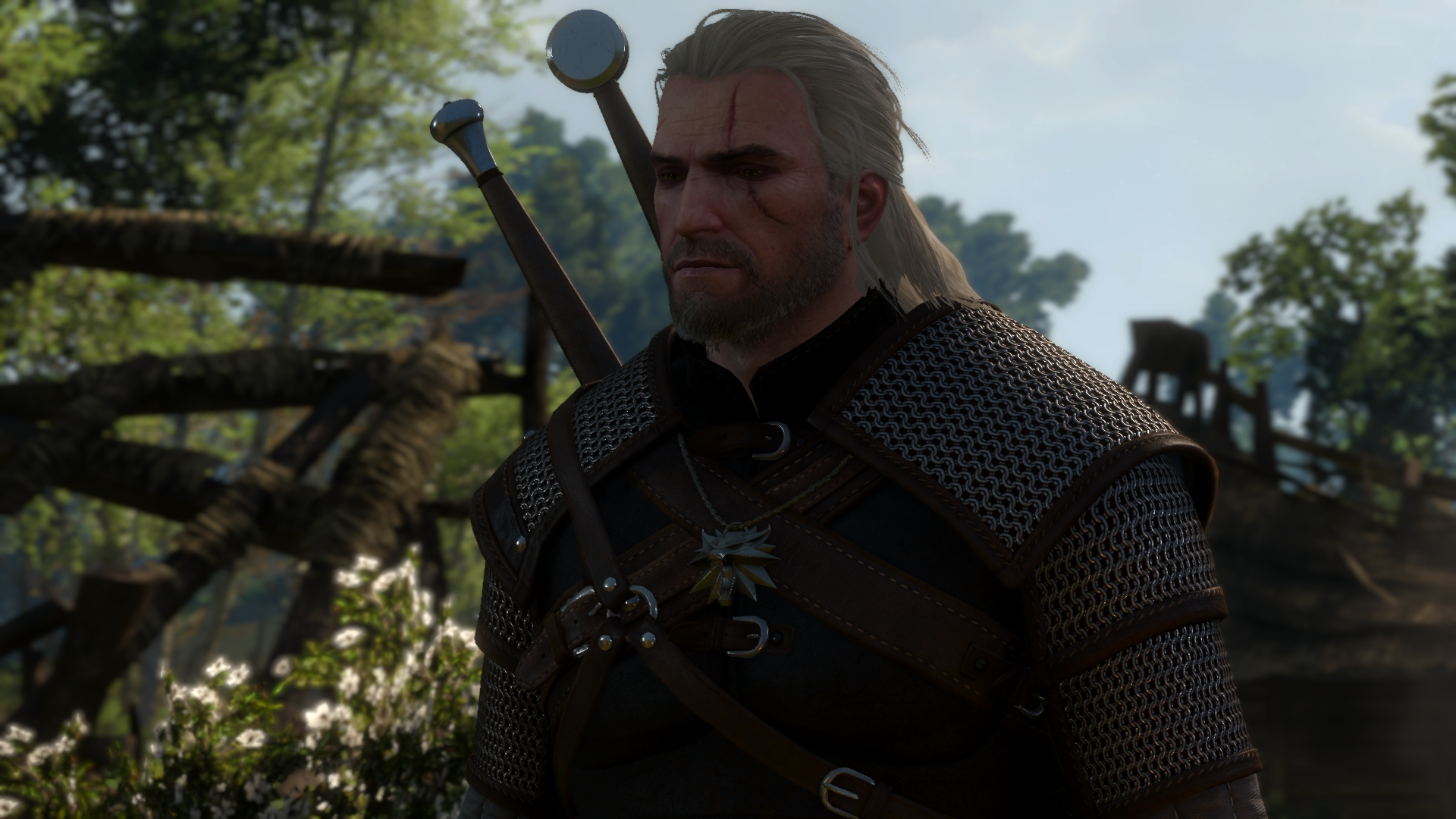 witcher3 2016-06-10 04-38-53-55.jpg - Witcher 3: Wild Hunt, the