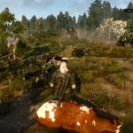 Witcher 3: Wild Hunt Приключения Геральта