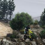 Grand Theft Auto 5 Beta vegetation & Props