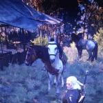 Witcher 3: Wild Hunt Witcher 3 баг