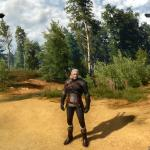Witcher 3: Wild Hunt Геральдм