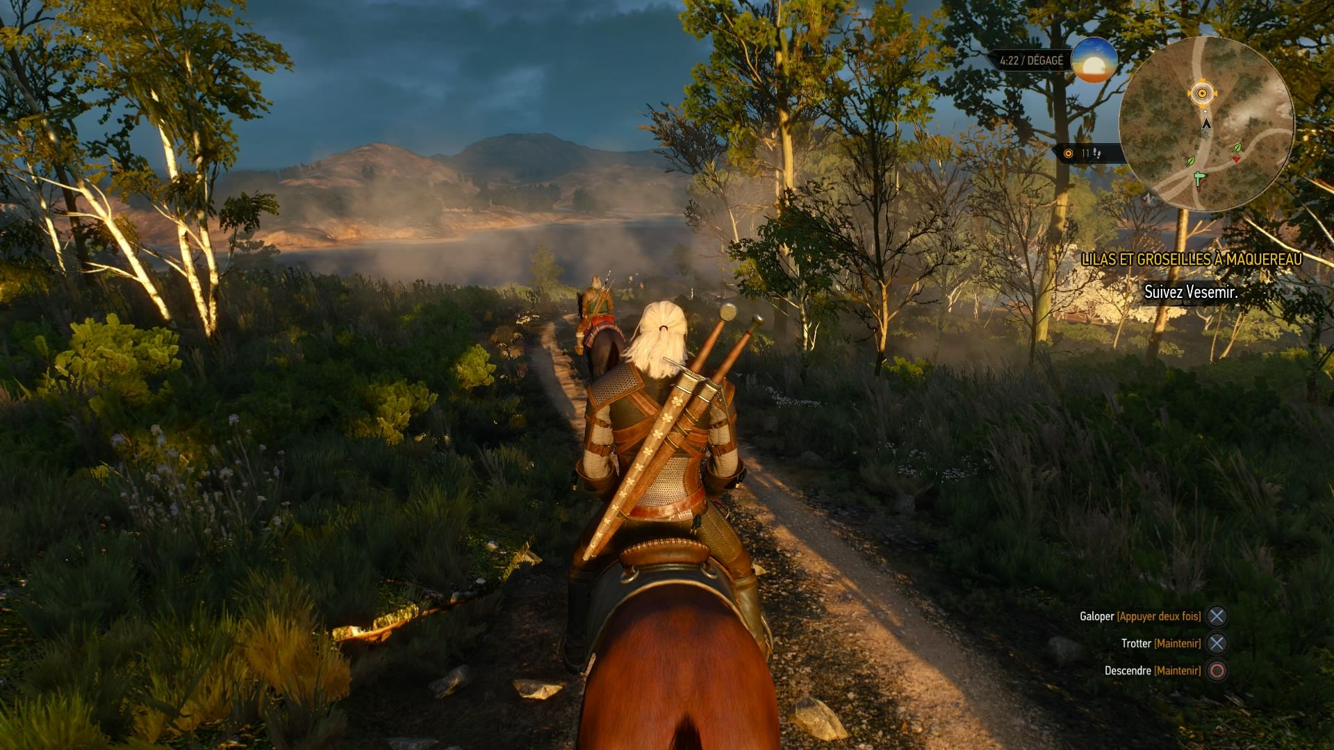 лес - Witcher 3: Wild Hunt, the