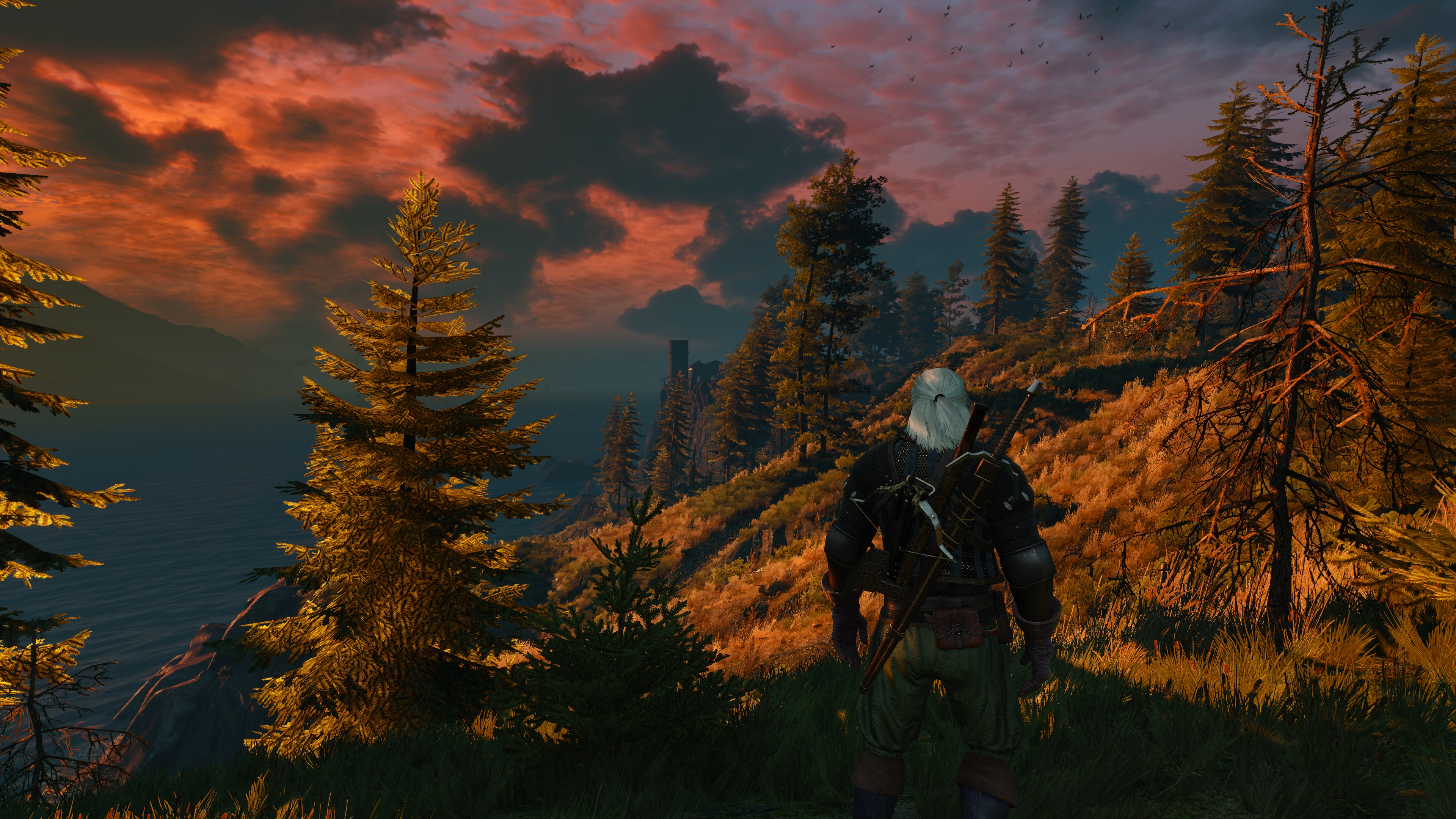 The Witcher 3 Super-Resolution 2017.12.18 - 23.53.25.08.jpg - Witcher 3: Wild Hunt, the