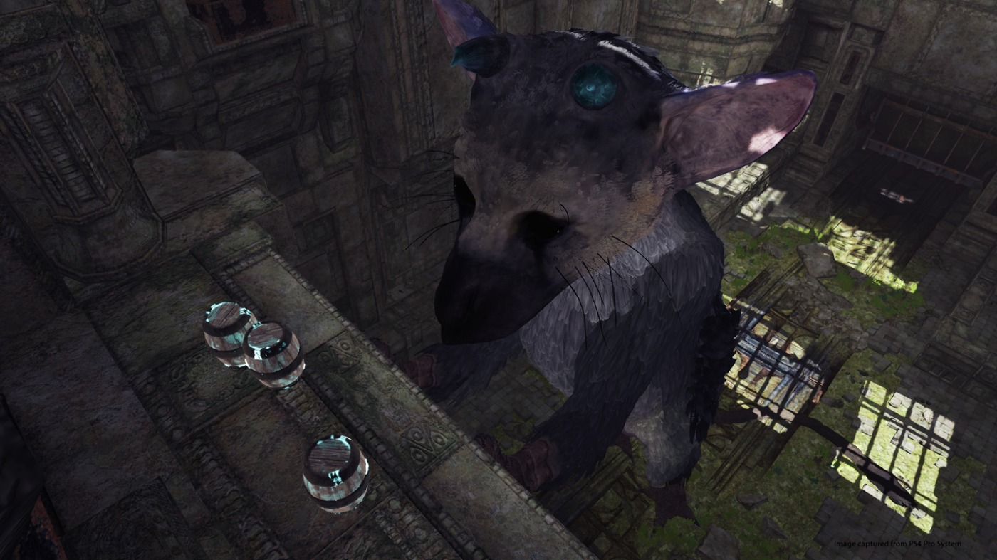 4f76a699faabab75a6d6a33d3bb3acfd.jpg - Last Guardian, the