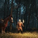 Witcher 3: Wild Hunt HUNT