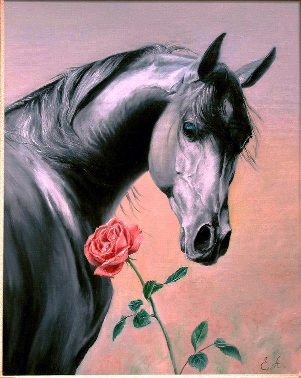 Красивые открытки с лошадьми 69