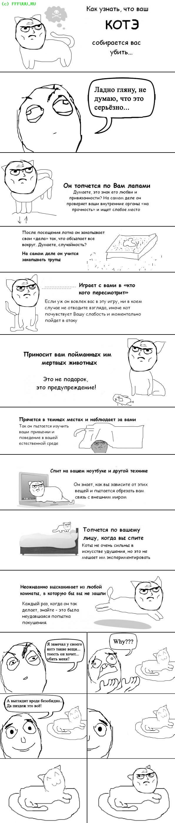 http://i.playground.ru/i/05/34/84/00/pix/image.jpg