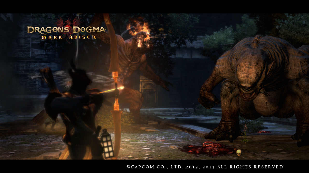 Dragon s dogma dark arisen подарки 25