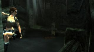 Скриншот Tomb Raider: Legend