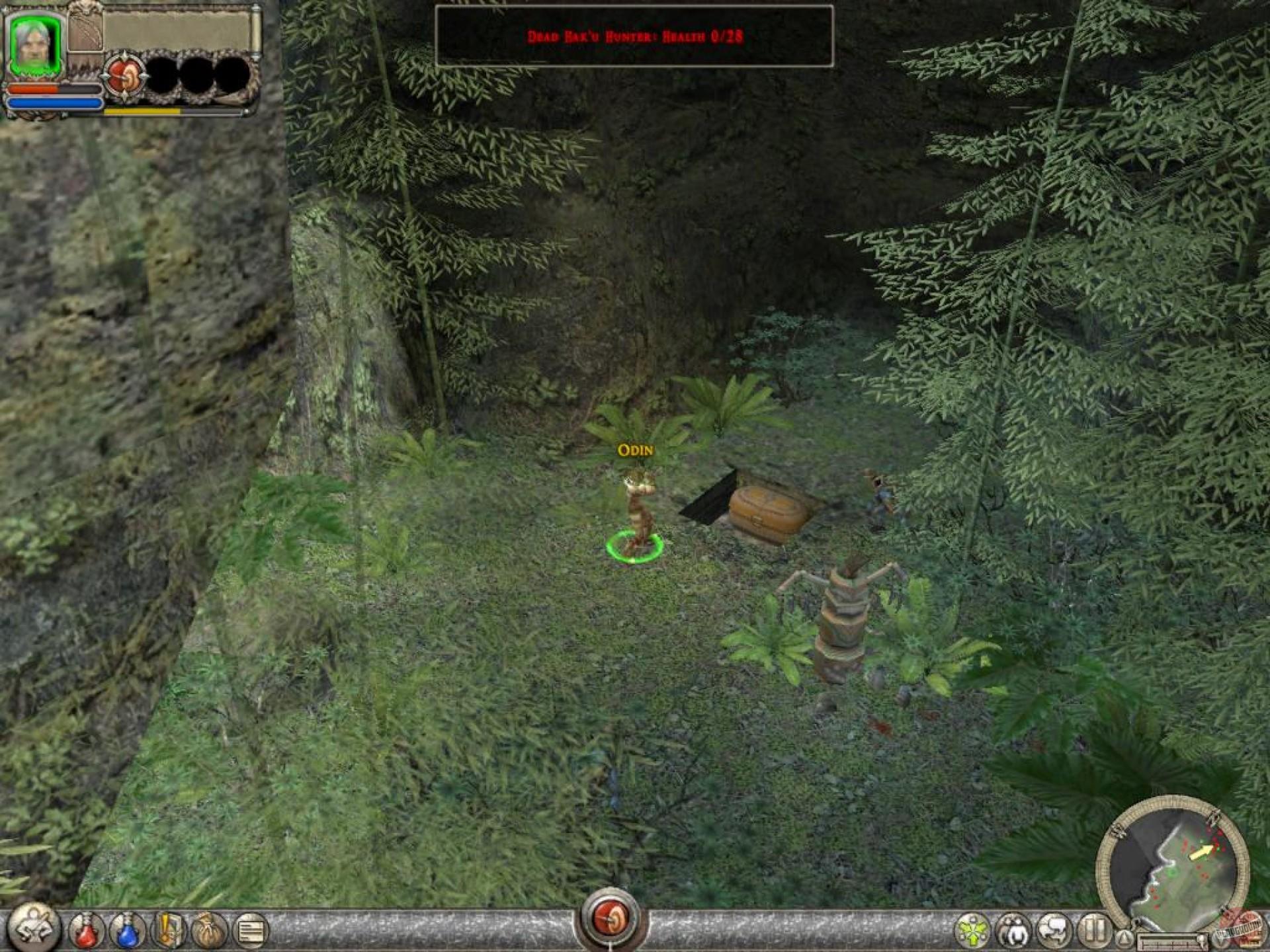 Dungeon siege xxx erotica pics