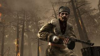 Скриншот Call of Duty: World at War