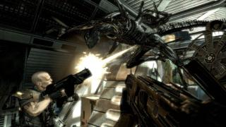 Скриншот Aliens vs. Predator (2010)