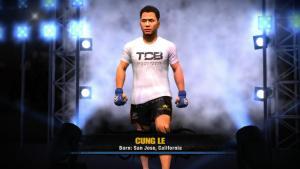 ��������� ��������� EA Sports MMA