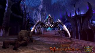 Скриншот Dungeons & Dragons Neverwinter