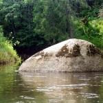 Камень_в_реке