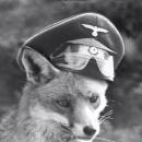 FOX_Skaynet