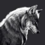 Wolf_Games