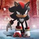 Hedgehog The Shadow