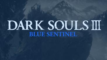 "Dark Souls 3 ""Синий Страж - античит"""