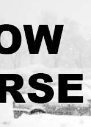 Обложка игры Snow Horse