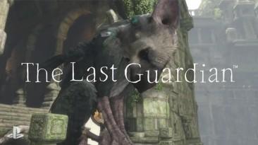 The Last Guardian выйдет в 2016 году