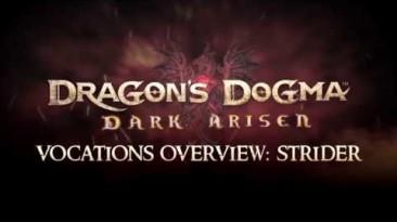 Capcom рассказала о классе Лучников в Dragon's Dogma: Dark Arisen