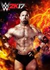 WWE 0K17