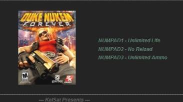 Duke Nukem Forever: Трейнер (+2) [1.0] {KelSat}