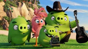 Новый трейлер мультфильма Angry Birds объяснил причину злости птиц