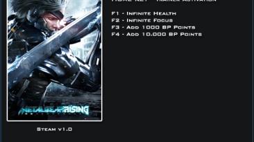 Metal Gear Rising ~ Revengeance: Трейнер/Trainer (+4) [1.0] {LinGon}