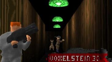 Voxelstein3D