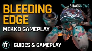 Bleeding Edge: новый персонаж - Мэкко