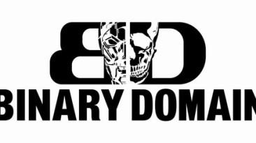 Первые оценки Binary Domain