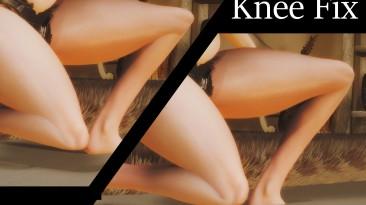Skyrim SE ''Исправление колена (прототип)''