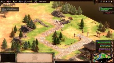 11 минут в Age of Empires 2: Definitive Edition