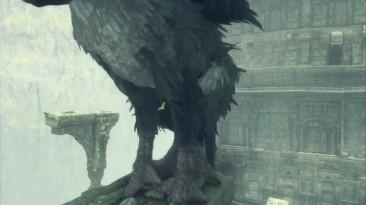 Самые большие проблемы  Last Guardian #8 [PS4Pro] (BlackSilverUFA)